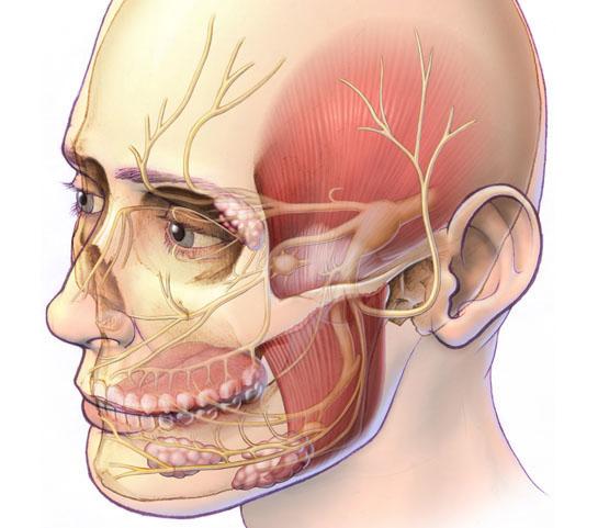 Как в домашних условиях лечить воспаление тройничного нерва